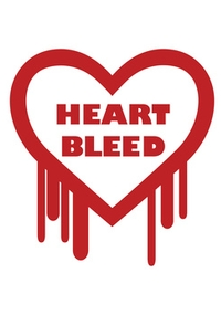Heartbleed Update VPN-Client Windows 8.1